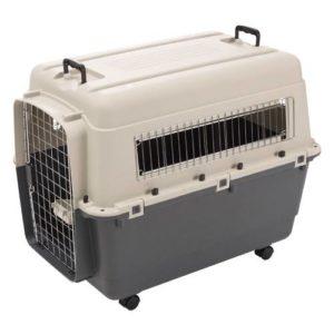 cage transport andes avion normes IATA